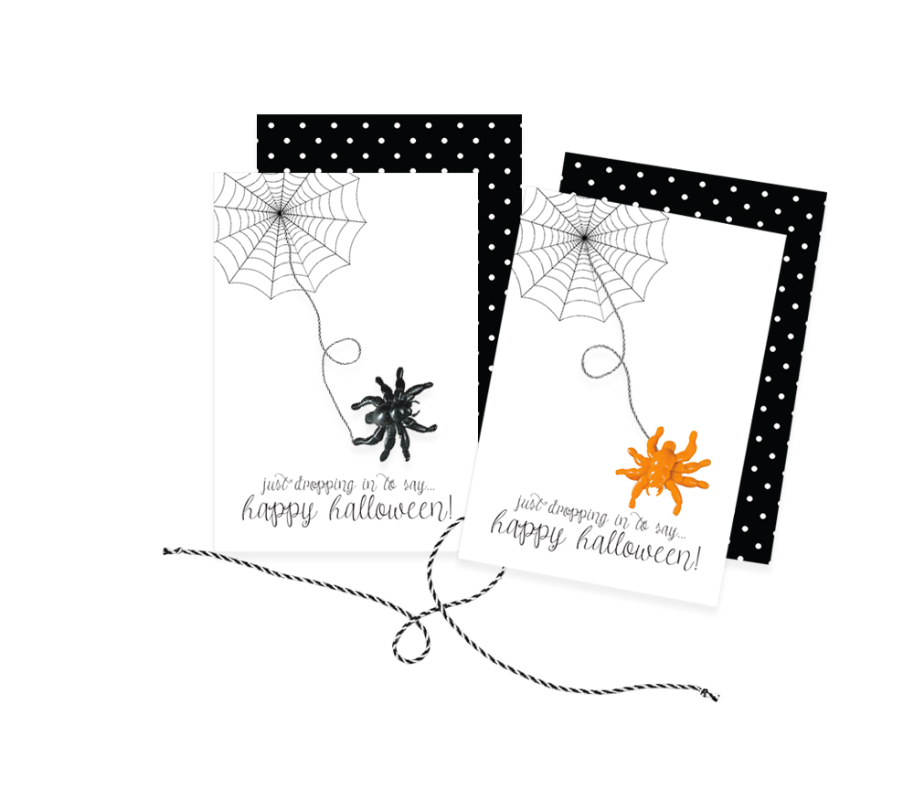 spider-card-for-media